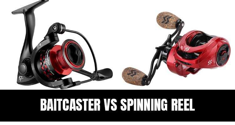 Baitcaster vs Spinning Reel Pros And Cons