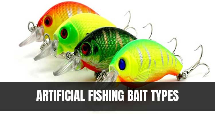 Artificial Fishing Bait Types
